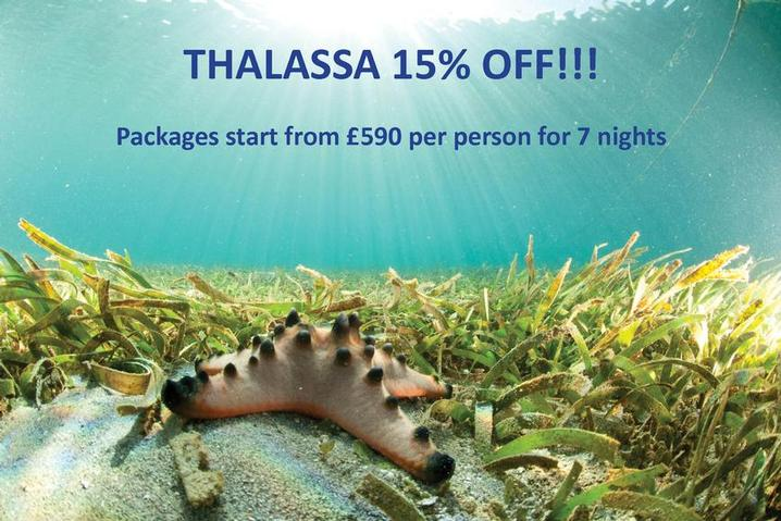 15% off stays between December 2015 and February 2016.  Why not escape to the tropics and avoid the Christmas rush!