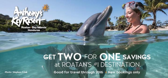 Dive and Stay with a friend at Anthony's Key Resort.  They have a 2 for 1 paying special for departures until 31 December 2016!